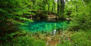 Bel étang dans les bois photographie stock libre de droits