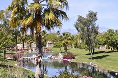 Bel étang de cascade à écriture ligne par ligne et de refroidissement dans Palm Spring Photographie stock libre de droits