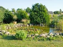 Bel étang de poissons de jardin avec des lis d'eau Photo stock