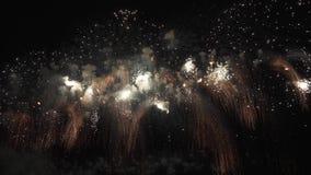Bel affichage coloré de feux d'artifice pour la célébration sur le fond noir, vidéo de longueur d'actions de concept de vacances  clips vidéos