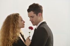 Bel amour de couples Photo stock