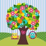 Bel arbre avec des hiboux sur des oscillations Photographie stock