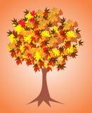 Bel arbre d'automne Photographie stock