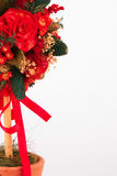 Bel arbre de Noël sur le fond blanc Images libres de droits