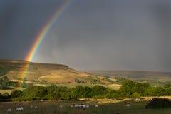 Bel arc-en-ciel vibrant au-dessus de ciel dramatique orageux au-dessus de paysage anglais de campagne image libre de droits