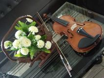 Bel art de mucis de photo artistique de violon images stock