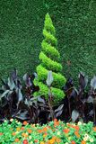 Bel art du jardinage Photo libre de droits