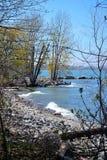 Bel au bord du lac avec des arbres au printemps Photographie stock libre de droits