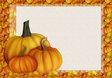 Bel Autumn Background Card avec des potirons dans des couleurs chaudes Image libre de droits