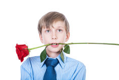 Bel enfant romantique drôle tenant une rose dans des ses dents (concept d'amour) Images libres de droits