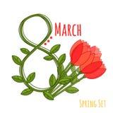 Bel ensemble plat avec les tulipes colorées sur le fond blanc Fond floral de vecteur Conception mignonne pour le jour de la femme images libres de droits