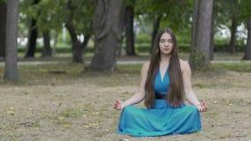 Bel extérieur de méditation de dame, longue brune de femme de cheveux en parc, pose de lotus banque de vidéos