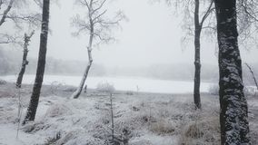 Bel hiver photographie stock