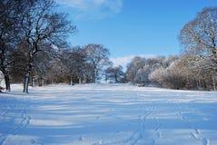Bel hiver Photo stock