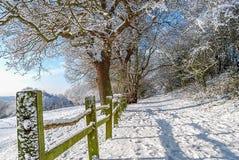 Bel hiver Photos stock
