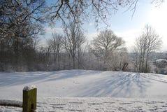 Bel hiver Image libre de droits