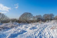 Bel hiver Photographie stock libre de droits