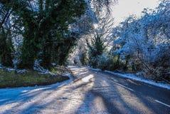 Bel hiver Images libres de droits