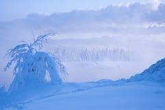 Bel hiver neigeux en Russie Photos libres de droits