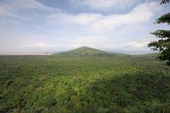 Bel horizontal africain photo stock