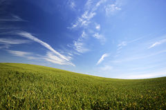 Bel horizontal avec l'herbe verte et le ciel bleu Photos libres de droits