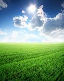 Bel horizontal d'été Images libres de droits