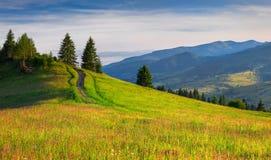 Bel horizontal d'été dans les montagnes Photos libres de droits