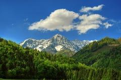 Bel horizontal d'alpin Image libre de droits