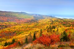 Bel horizontal d'automne photographie stock
