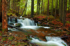 Bel horizontal d'automne Image stock