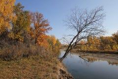 Bel horizontal d'automne Photo stock