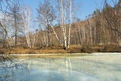 Bel horizontal d'automne Des arbres sont reflétés en rivière congelée Photographie stock libre de droits
