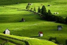 Bel horizontal dans le nord de la Roumanie Image libre de droits