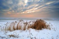 Bel horizontal de l'hiver images stock