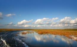 Bel horizontal de marais Photos libres de droits