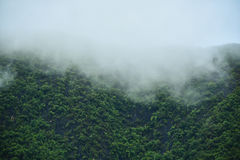 Bel horizontal de montagne photo stock
