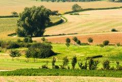 Bel horizontal de terres cultivables photo stock
