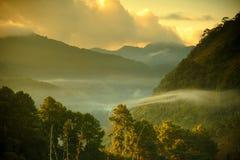 Bel horizontal en hiver chez Chiangmai photo stock
