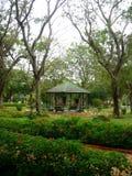 Bel Horizontal-II de zoo de Mysore image libre de droits