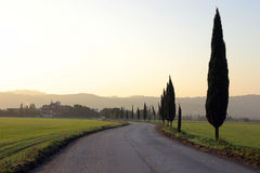 Bel horizontal italien au crépuscule Images stock
