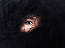 Bel oeil de femme sous le voile noir Image stock