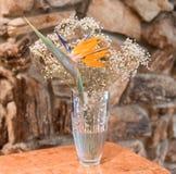 Bel oiseau de la composition florale en paradis dans un vase en cristal photo libre de droits