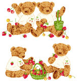 Bel ours Images stock