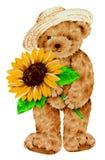 Bel ours Photos libres de droits