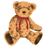 Bel ours Photographie stock
