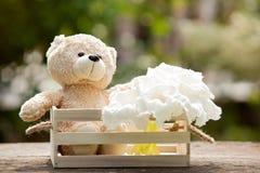 Bel ours de nounours dans la boîte en bois sur le bois, concept de l'espoir a d'amour Image libre de droits