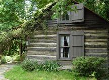 bela domowa Obraz Stock