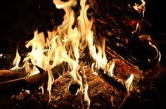 Bela ogień z wielką nocą Fotografia Royalty Free