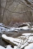 bela strumień zima Zdjęcia Royalty Free