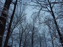 belalakaya ουρανός βουνών Καύκασου dombaj γκρίζος στοκ φωτογραφίες
